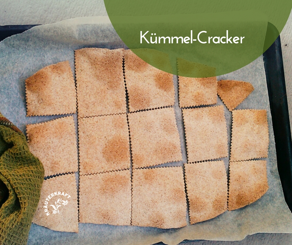 Lust auf Kümmel-Cracker?