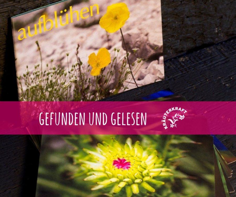 Karten-Set Bergblumen von Amathea