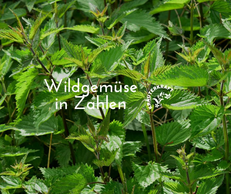 Wildgemüse in Zahlen