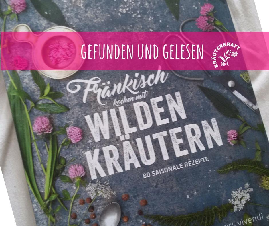 Hollerblüteneis mit Kirschsauce