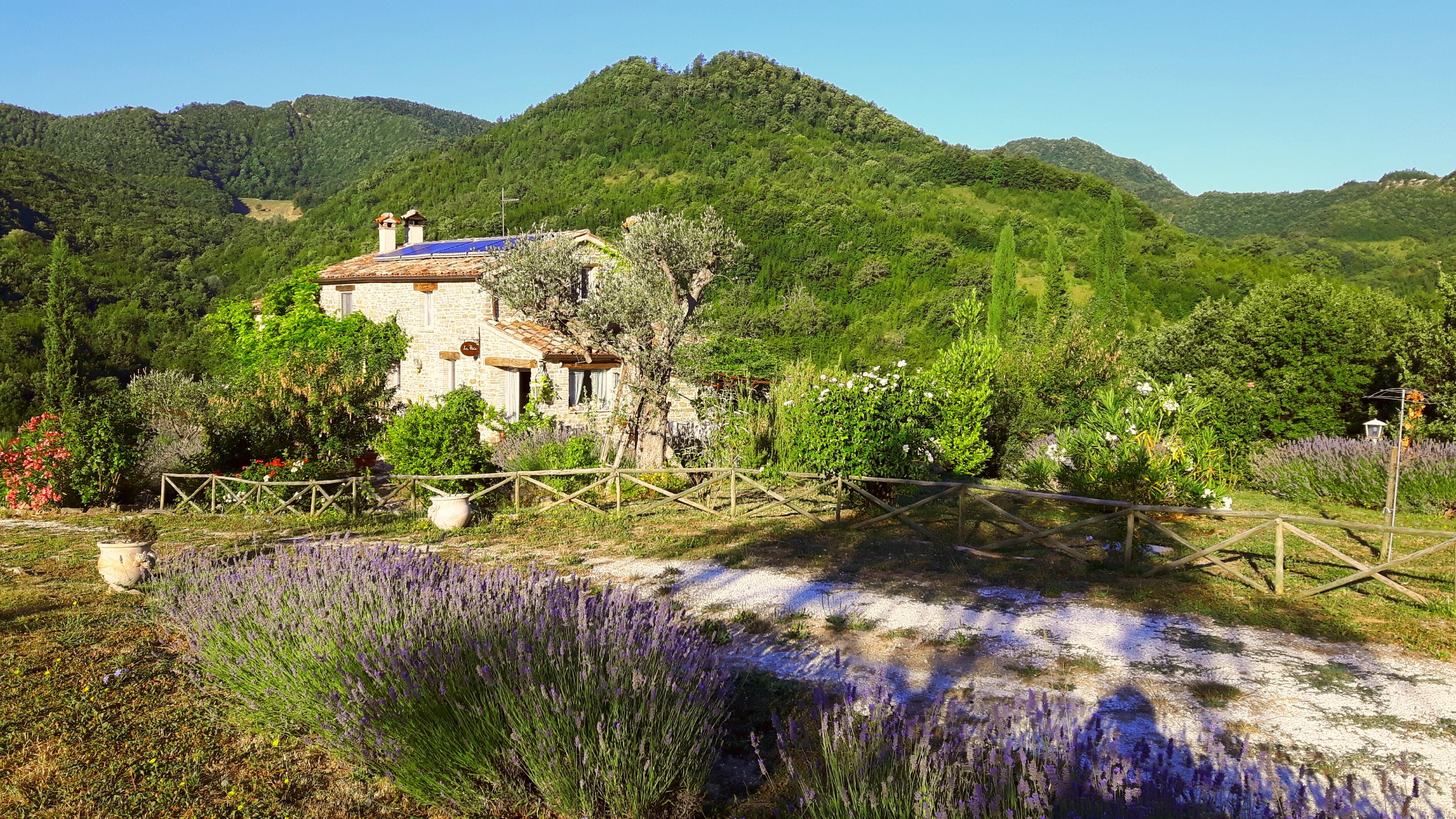 Lavendelreise in die Toskana