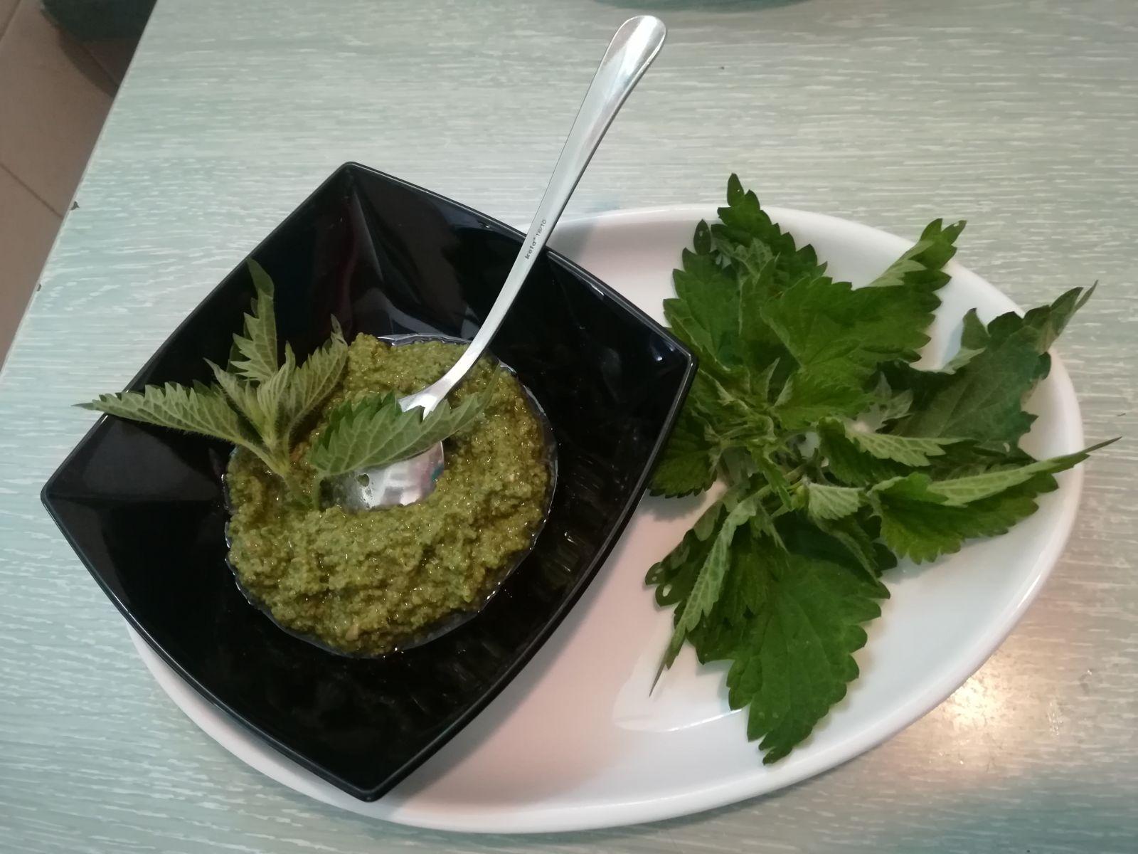 Brennnessel-Pesto mit Sonnenblumenkernen