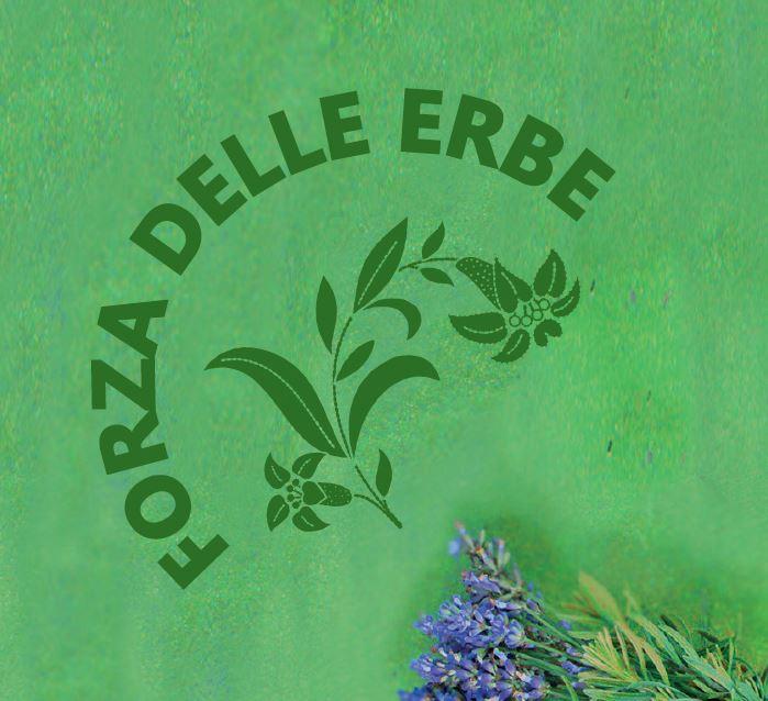 Il nostro blog – finalmente in italiano