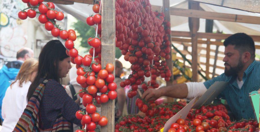 Von Welternährung und Tomaten